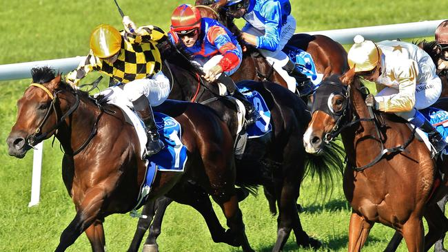 Queanbeyan Cup 2020: Weight claim gives Pecuniary Interest a push in the right direction