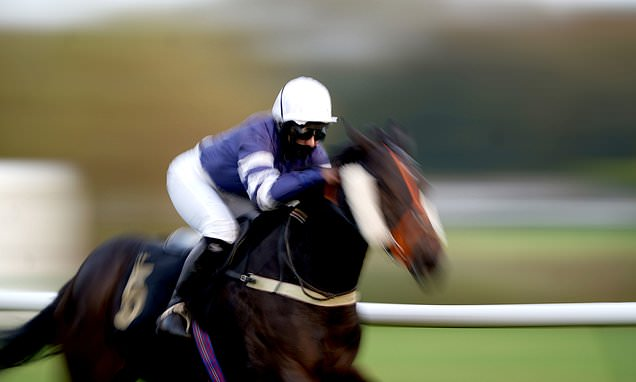 Robin Goodfellow's Racing Tips: Best bets for Friday, November 6