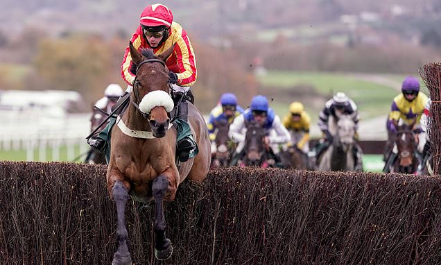 Coole Cody produces red-hot performance to win Cheltenham's Gold Cup