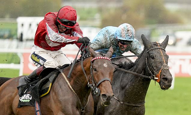 Robin Goodfellow's Racing Tips: Best bets for Wednesday, November 18