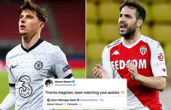 Cesc Fabregas heaps praise on 'fantastic' Chelsea star Mason Mount