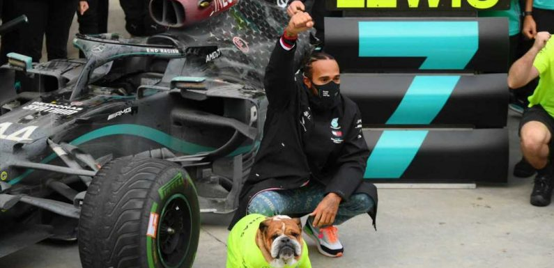 Lewis Hamilton plans on celebrating seventh F1 title with 'minestrone soup and wine' after challenging 2020