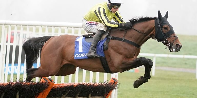 Allmankind ready for fences at Warwick