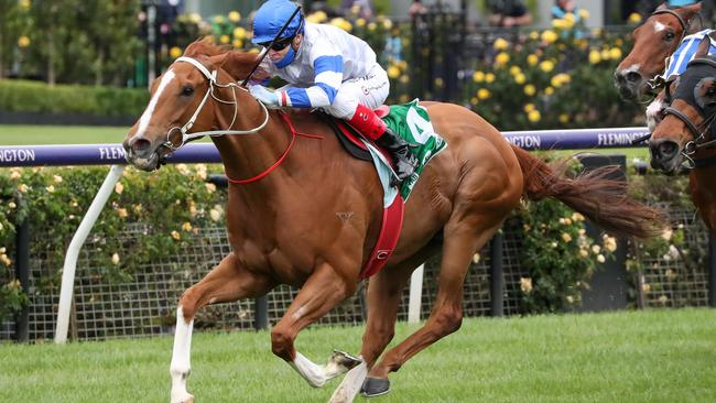 The Pro Punter Saturday Line for Sandown and Newcastle races on Saturday