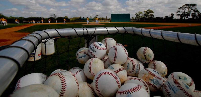 Major League Baseball issues invites for minor-league affiliates; here are teams that didn't make cut