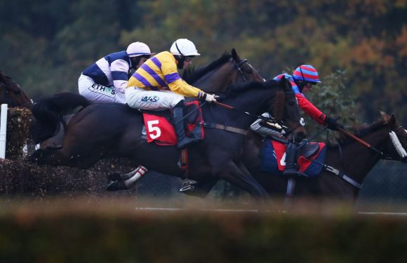 Tips for ITV Racing as Newsboy heads to Sandown for Nap selection