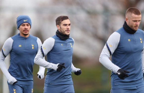 Harry Winks' growing Spurs frustration set to lead to January transfer scramble