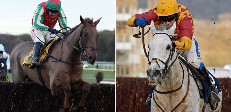 Aintree again for Ramses De Teillee and Vieux Lion Rouge