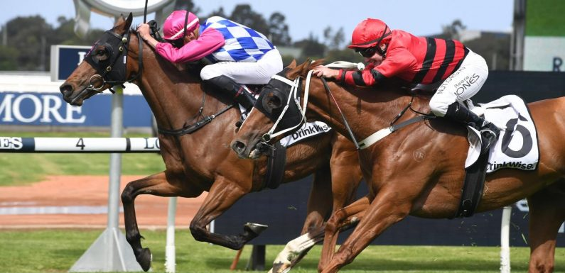 Jones looking to make the most of Randwick rides