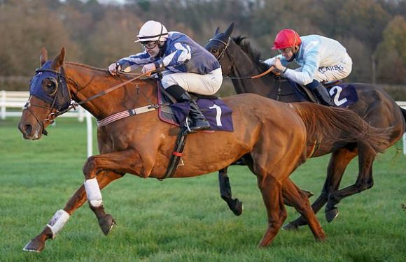 Robin Goodfellow's Racing Tips: Best bets for Friday, December 4