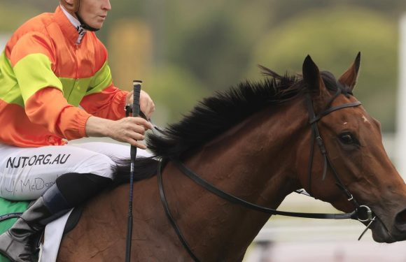 Mo's Crown has gear change for Rosehill assignment
