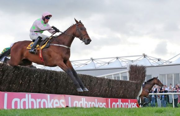 All eyes on Chacun Pour Soi at Cork