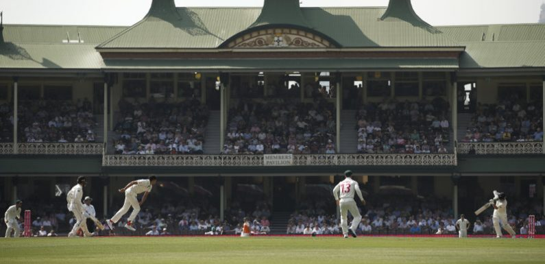 SCG attendance capped at 10,000 per day for third Test