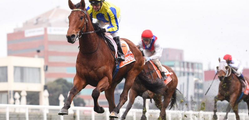 Mystery Shot out to make it six from six for trainer Lindsey Smith at Flemington