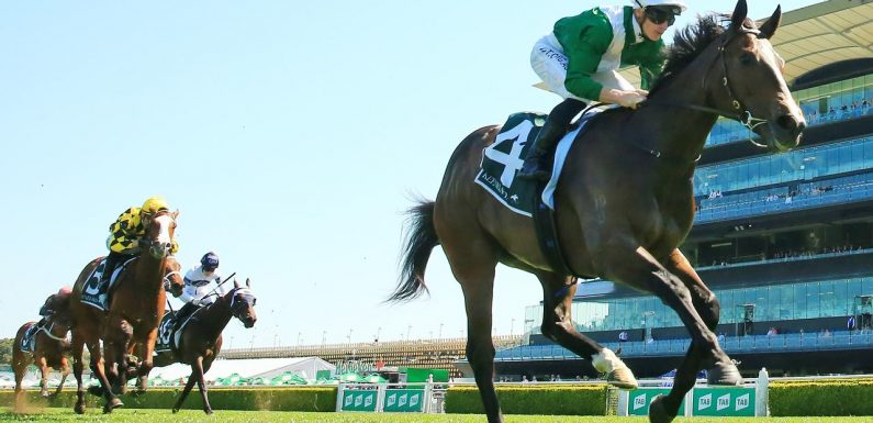 Enthaar sizzles in Werribee trial hit out