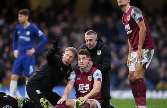Premier League agrees to trial concussion substitutions