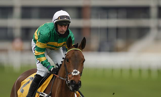 Champ boosts his hopes for Cheltenham Gold Cup