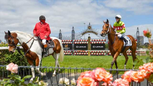 Showcase Group 1 racing in Sydney and Melbourne on Saturday