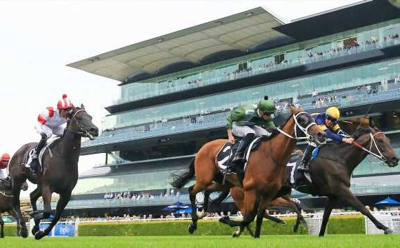 New race to benefit smaller city and provincial stables