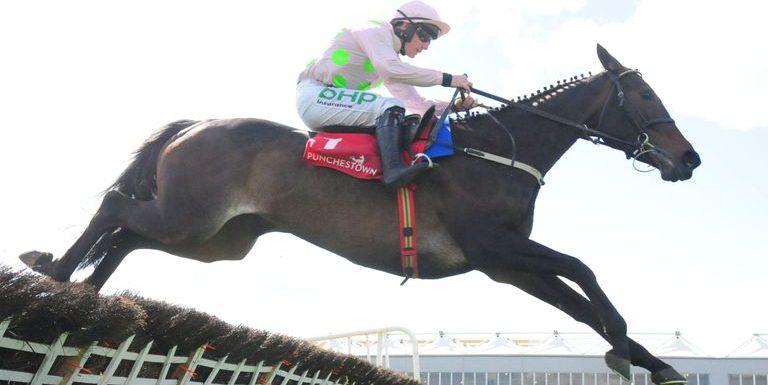Benie Des Dieux ruled out of Cheltenham