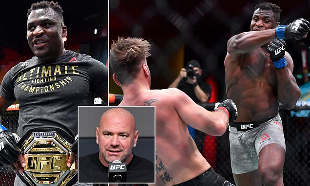 White lauds 'scary' Francis Ngannou after he knocked out Stipe Miocic