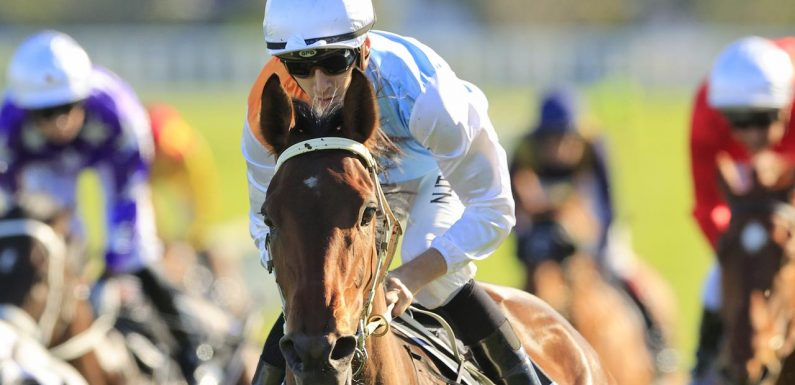 Montefilia will be set for the Derby, while Mo'unga now goes to the Doncaster Mile