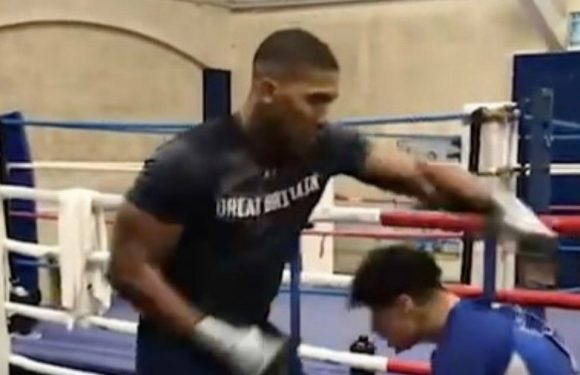 Anthony Joshua and Tyson Fury start training in different style as deal nears