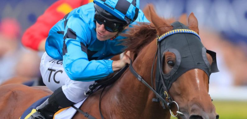 Exciting prospect Ellsberg the one to beat in Hawkesbury Guineas