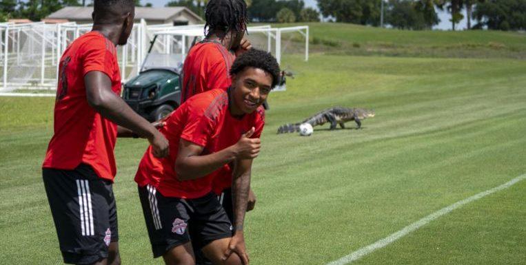 Football: Gator crashes Toronto FC training session in Florida