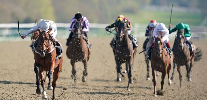 Newsboy's horse racing tips for All-Weather Finals Day on ITV