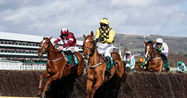 Sign up for our racing newsletter for all the latest Cheltenham Festival news