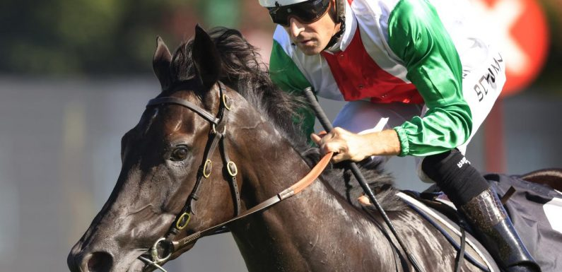 Trainer confident boom Kiwi Aegon is ready for $3 million Doncaster Mile