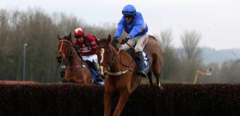 Secret Reprieve's trainer on not seeing Grand National horse make race