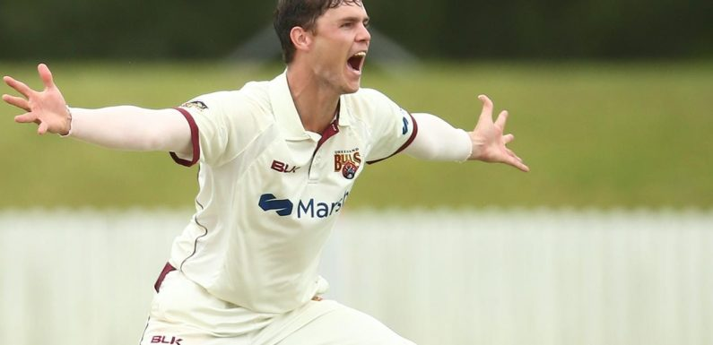 Cricket News: A rain-affected draw with NSW means Queensland will host the Sheffield Shield final