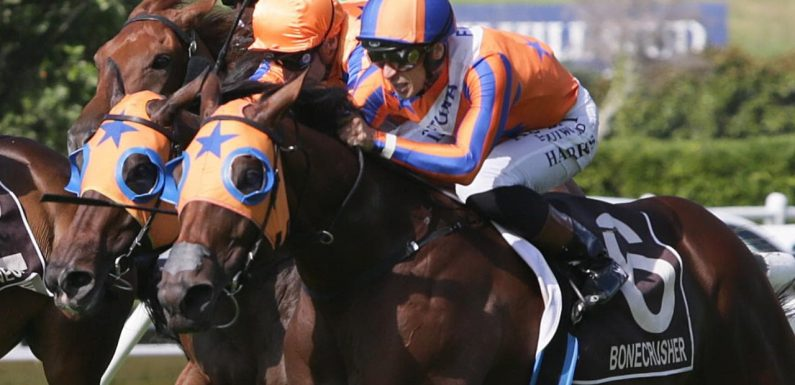 Champion Kiwi mare Melody Belle under an injury cloud for Tancred Stakes