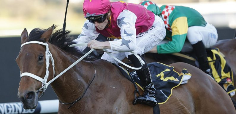 Rosehill races: Brad Davidson's tips and extended preview