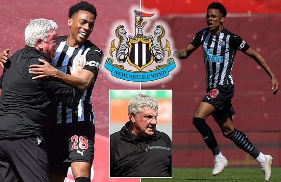 Bruce admits he'd 'love' to sign Arsenal's Joe Willock permanently