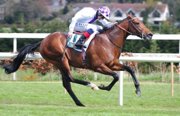 Poetic aims for Poulains prize