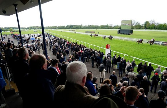 Punters thrilled to be back racing at Windsor as lockdown eases