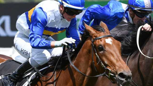 SA Derby: Cindy Alderson aims higher with emerging stayer Liqueuro