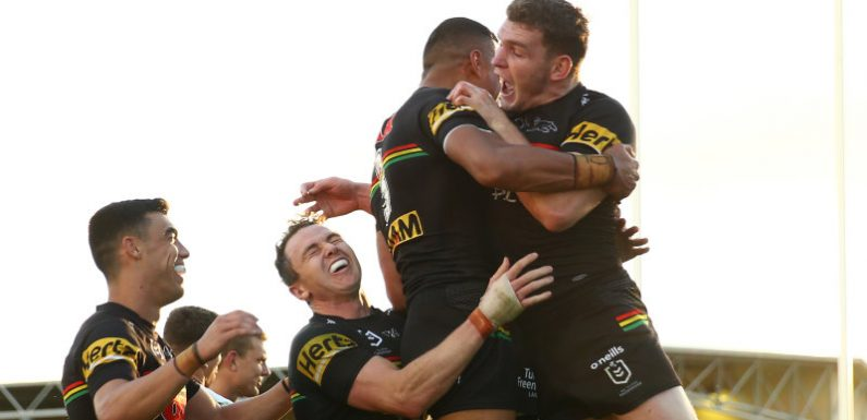 Think Penrith is doing well in the NRL? Check out the rest of the club