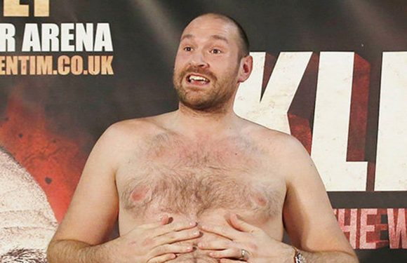 Tyson Fury planning to weigh 300lbs – the same as a gorilla or two Mason Mounts
