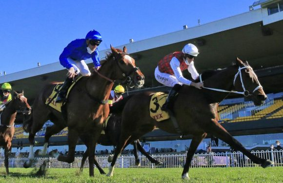 Chris Waller has won his sixth Winter Challenge with Order Again charging to victory