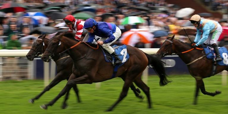 David Menuisier considering options for York winner Migration but reluctant to run in Cambridgeshire
