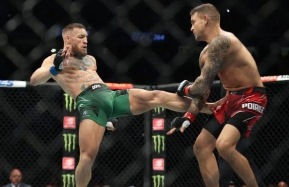 Conor McGregor told Daniel Cormier would 'murder' him by UFC star Michael Bisping