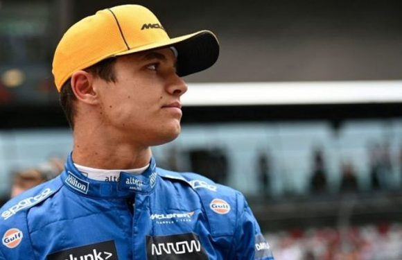 Lando Norris fights tears and admits he got it wrong as McLaren miss out on Russian GP win