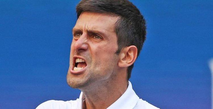 Novak Djokovic lays out dream retirement after battling past Kei Nishikori at US Open