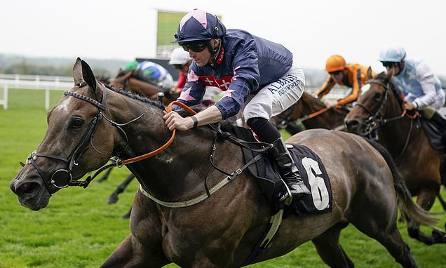 Robin Goodfellow's racing tips: Best bets for Tuesday, September 7