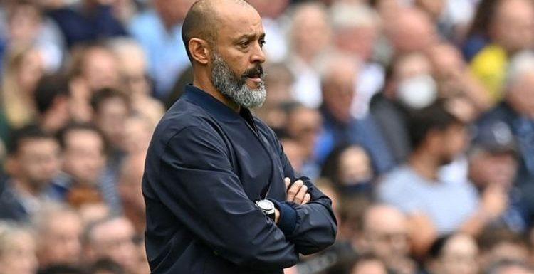 Tottenham have signed their own Bebe and Martin Demichelis for Nuno Espirito Santo