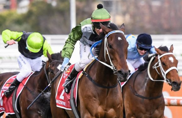 Incentivise delivers on expectations with commanding Caulfield Cup win